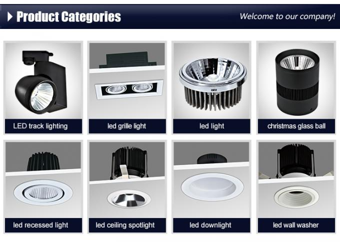 Australian Standard Plug Recessed LED Surface Mounted Downlight led down light